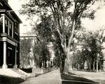 State Street, ca.1984.