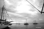 Portland harbor, before the OpSail 2000 celebration. by Abraham A. Schechter