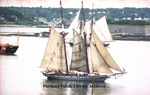 Parade of Sail, viewed from Eastern Promenade. by Gordon Chibroski