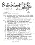 Peaks Island Star : July 1981, Issue 8