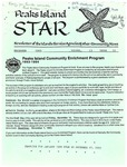 Peaks Island Star : December 1993, Vol. 11, Issue 12 by Service Agencies of the Island